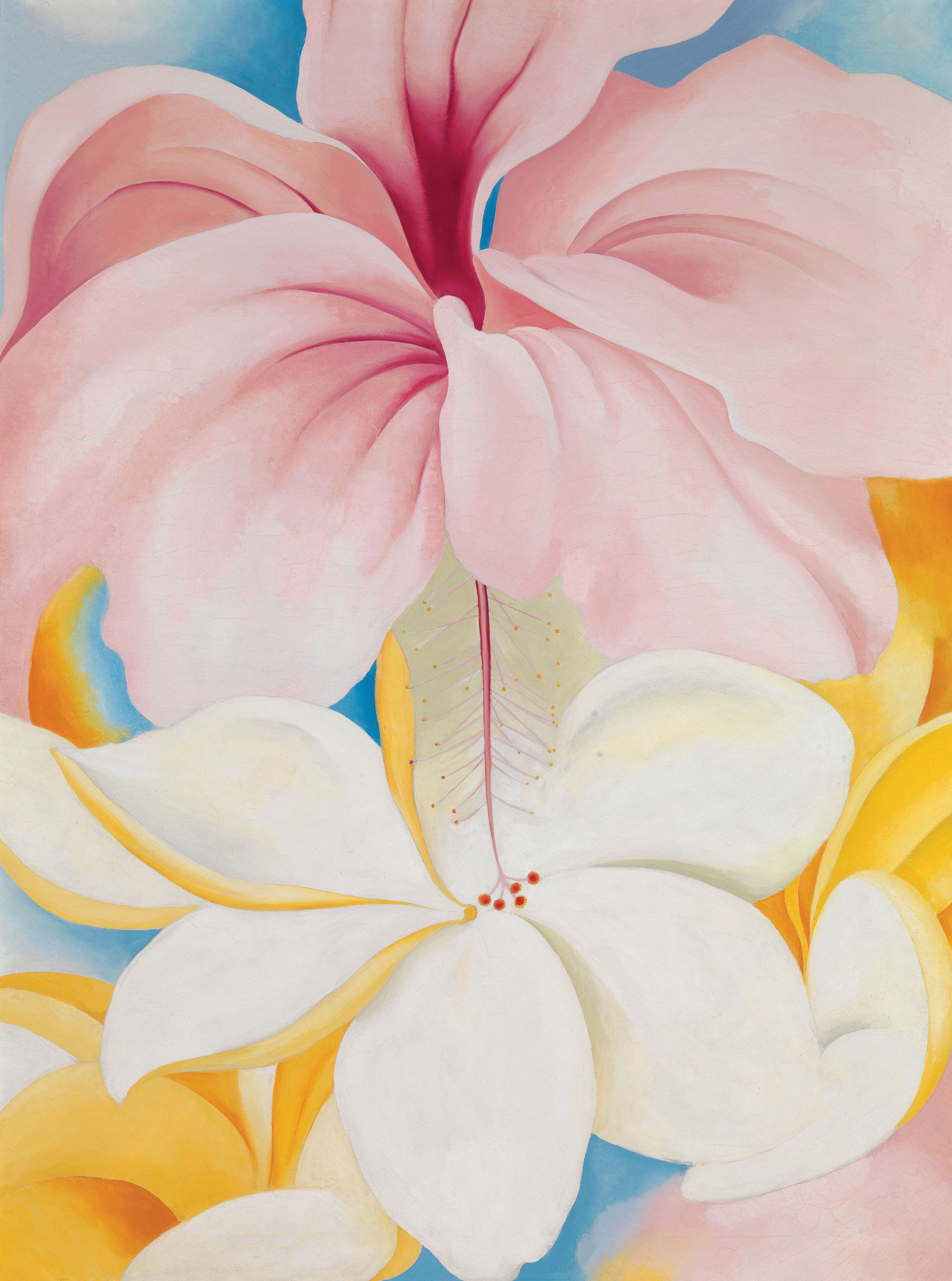 Georgia Okeeffe Paints Hawaii National Endowment For The