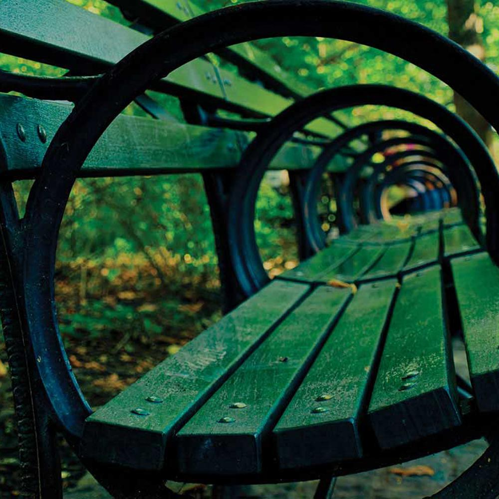 Artistic photo of a bench in Central Park, looking through the armrests.