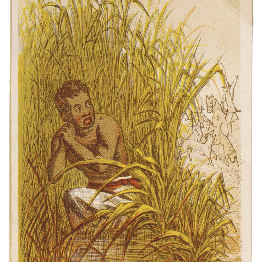 Man hiding in the weeds of a swamp to avoid slave catchers
