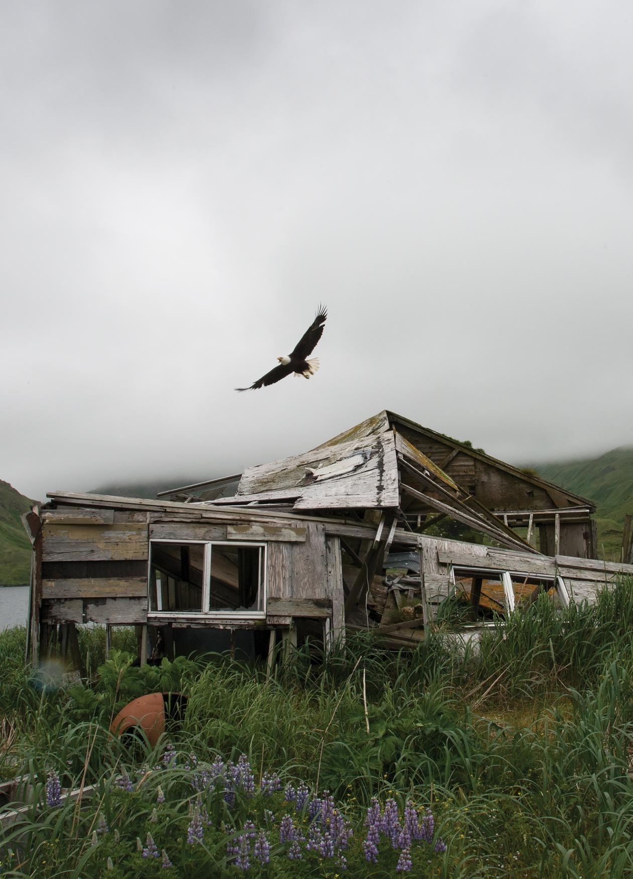 Photograph of cloudy sky in background, destroyed house in foreground