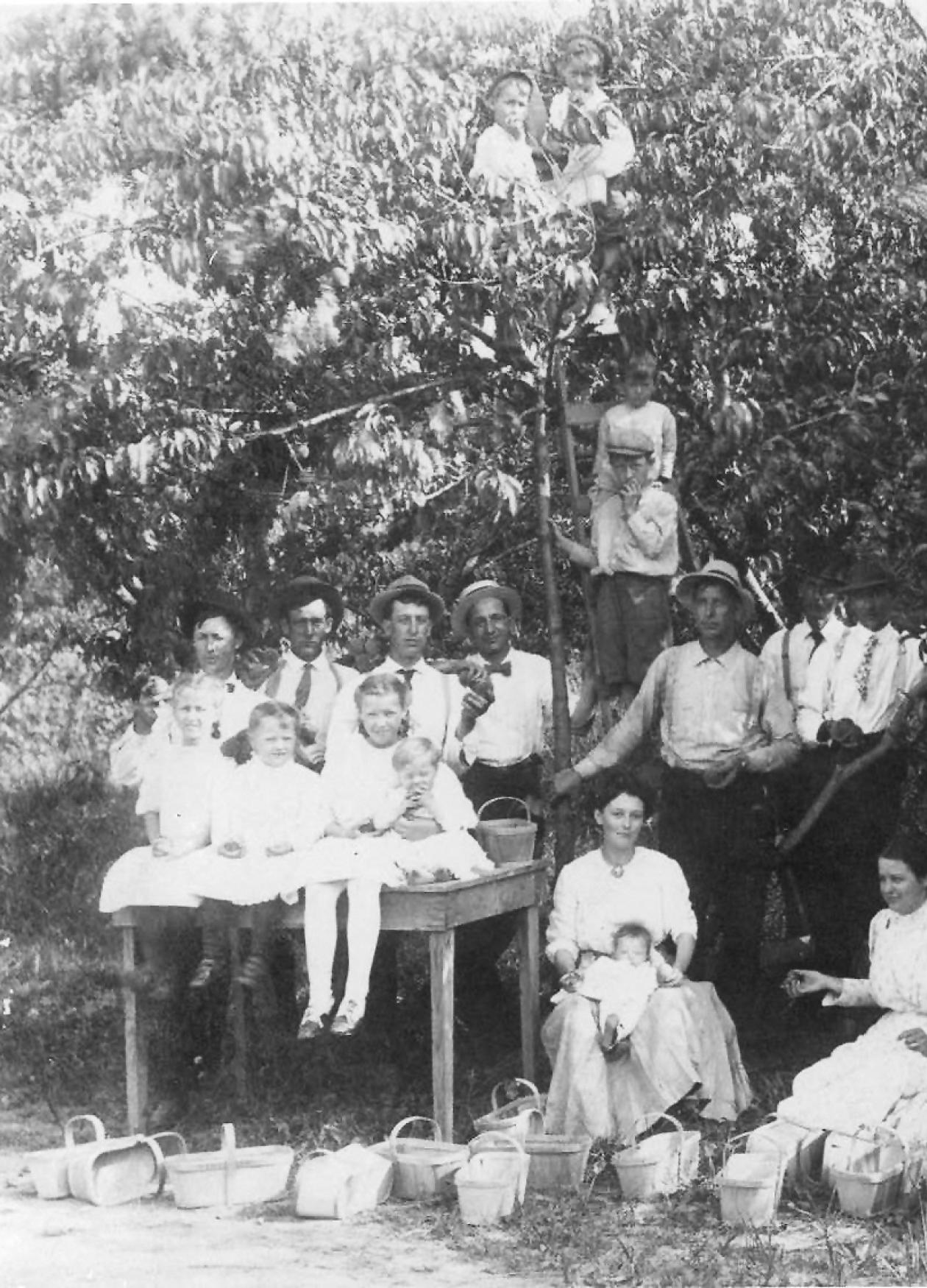 Family, all dressed in white, sitting and standing in a stand of trees