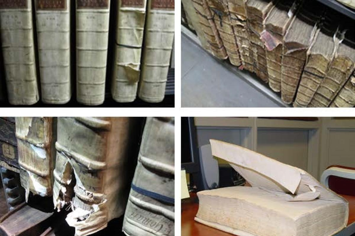 Multiple frames of antique books in various states of preservation