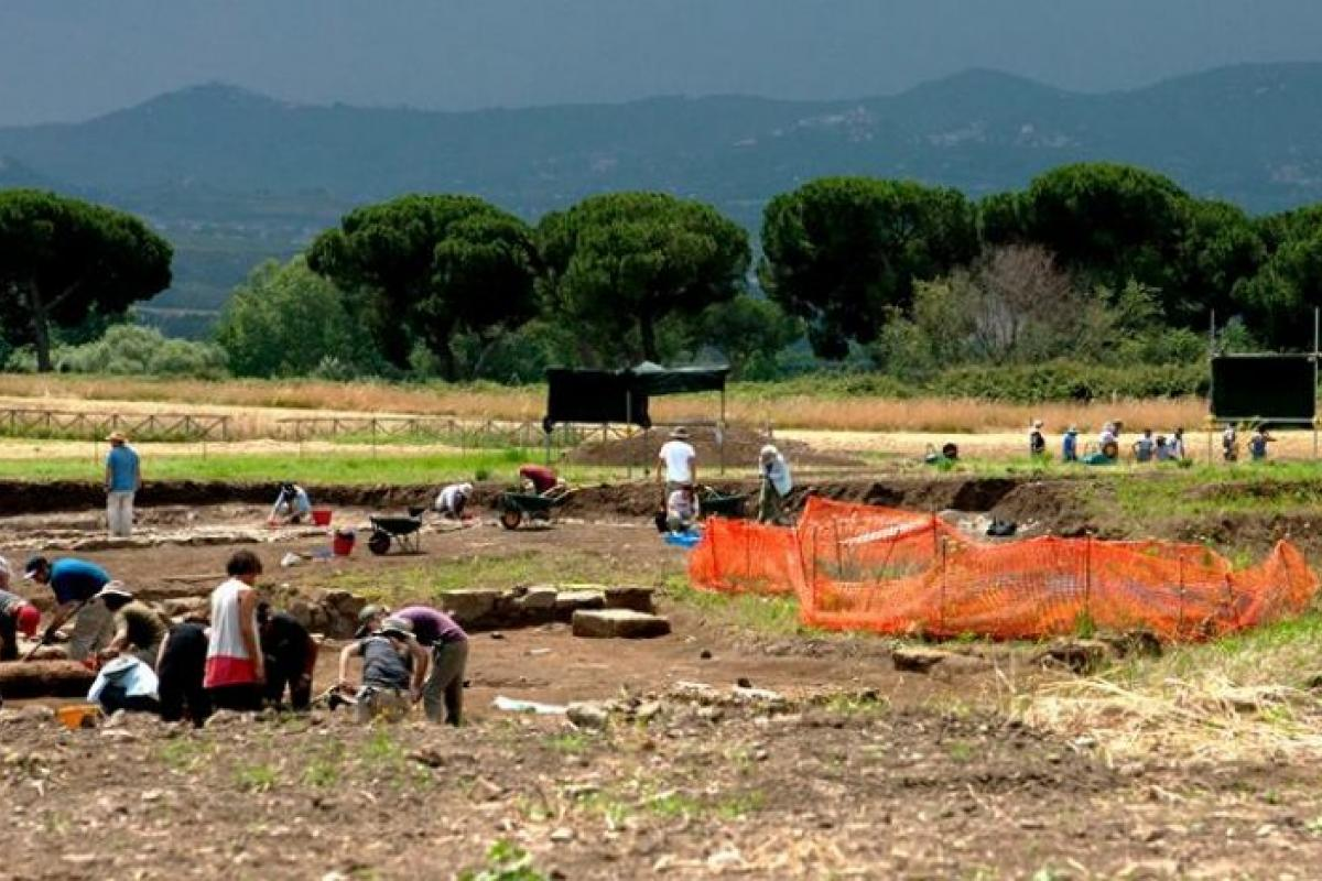 Photograph of the excavation site