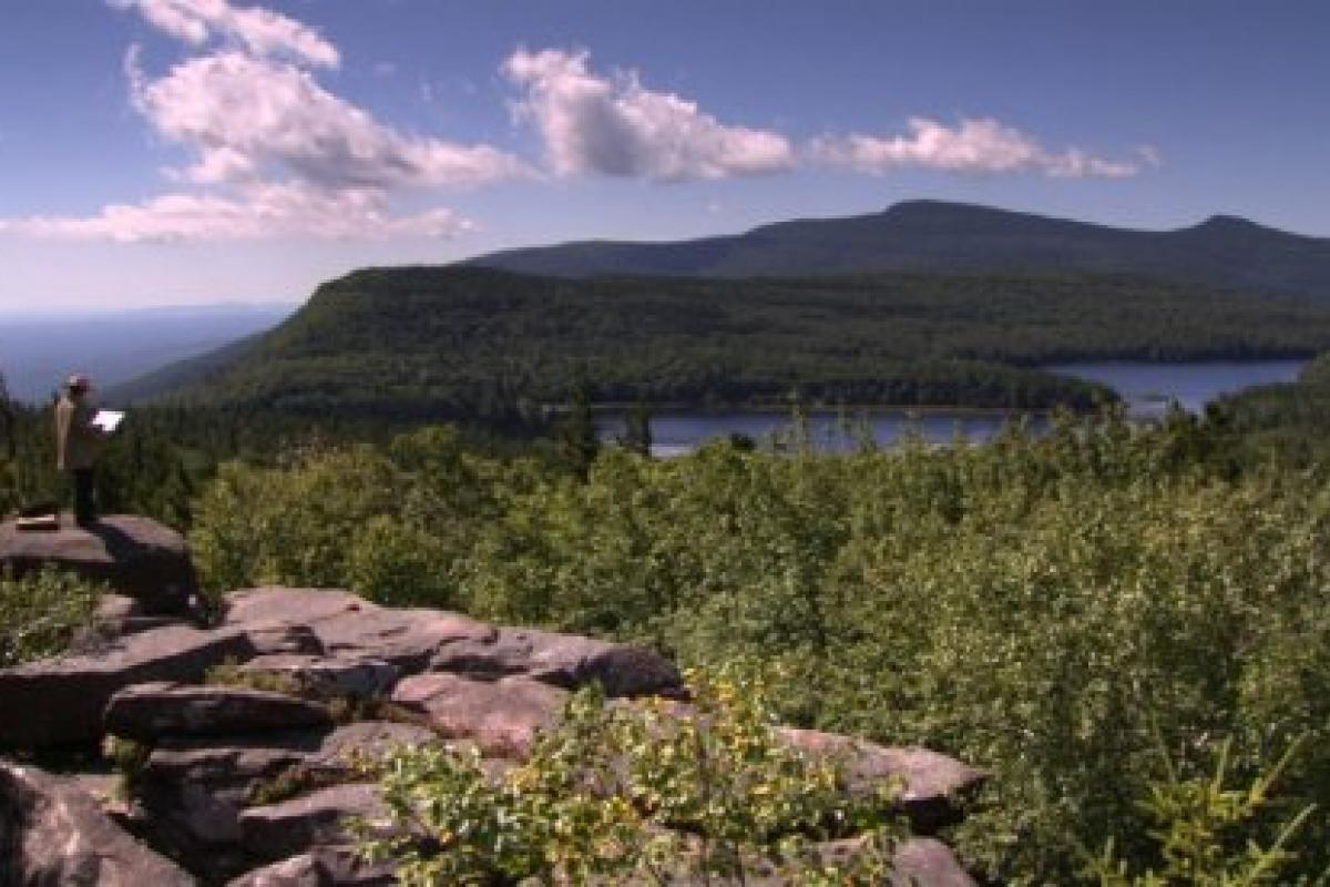photograph of the Hudson River, with Catskill Mountains in background