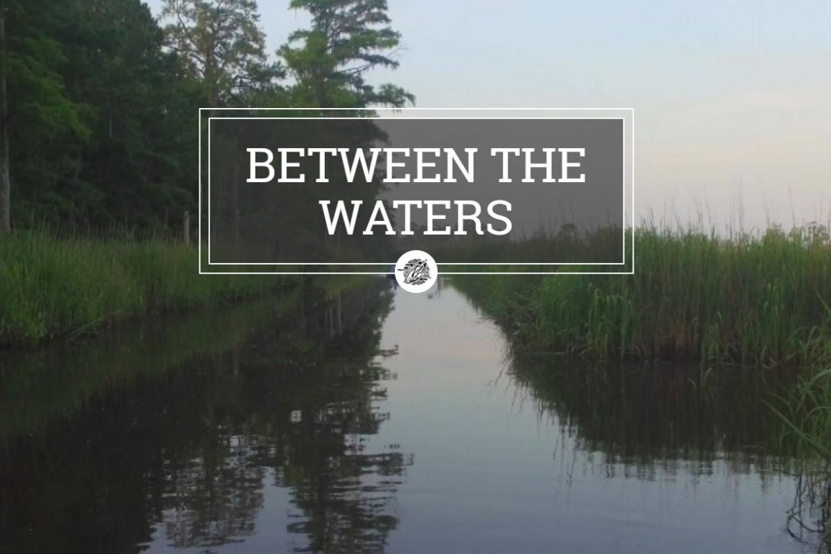 Between the Waters, a South Carolina Educational Television website.