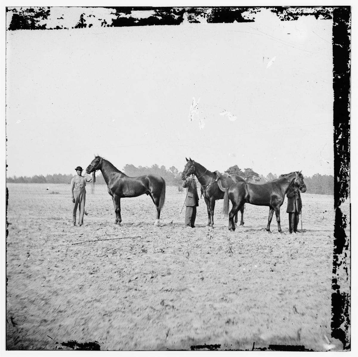 Grant as a young man, in a field with three horses