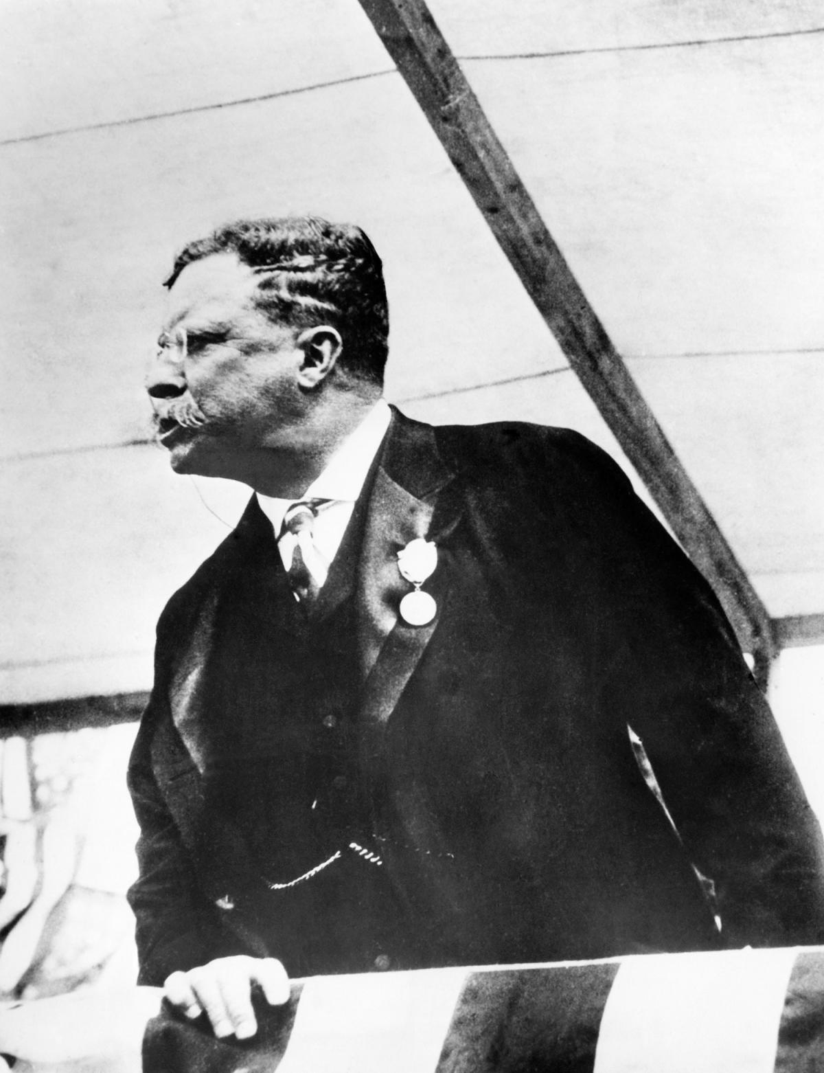 Teddy Roosevelt looking to his right, wearing a dark suit
