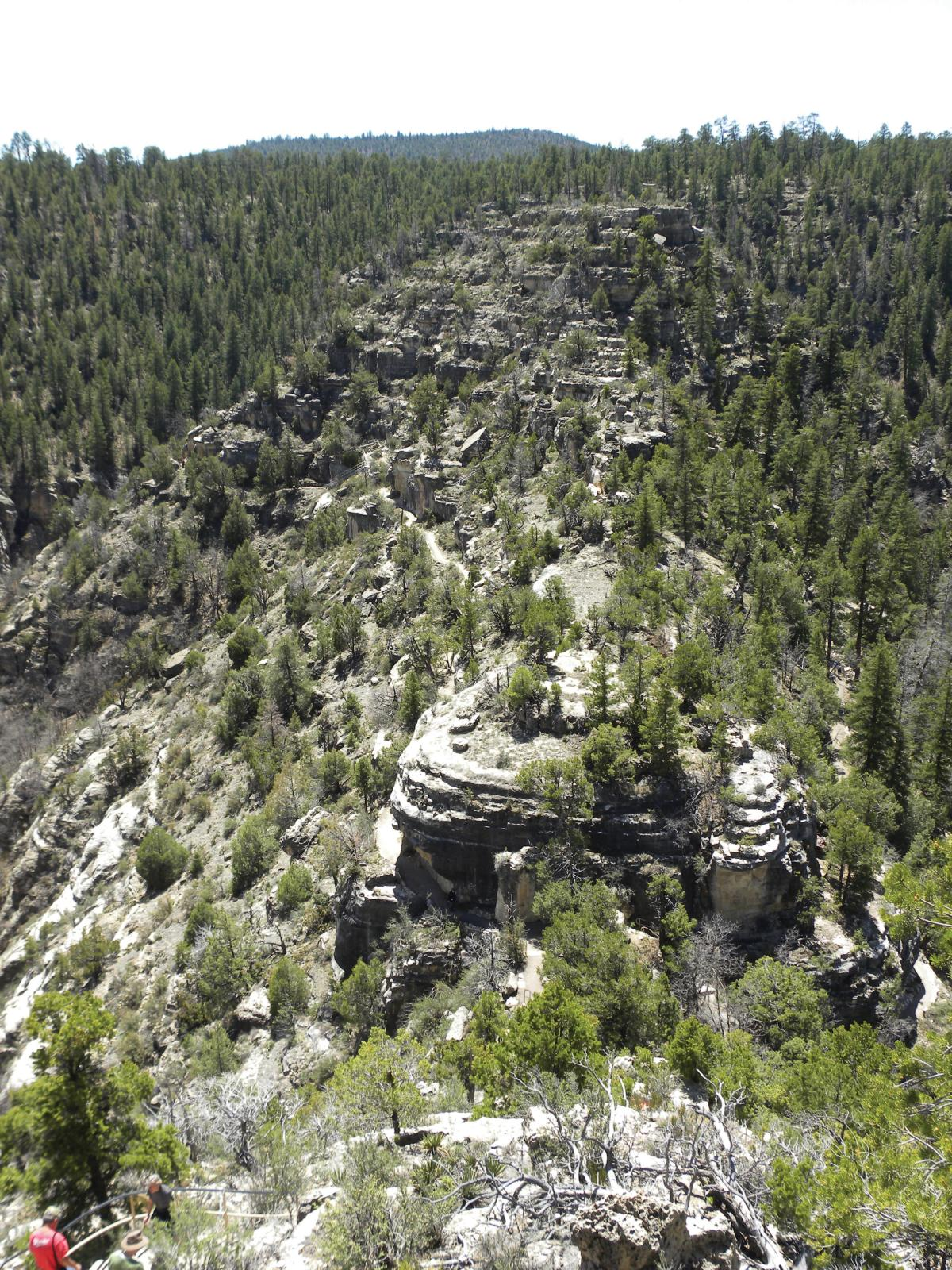 Rocky outcrop covered in trees in Walnut Canyon