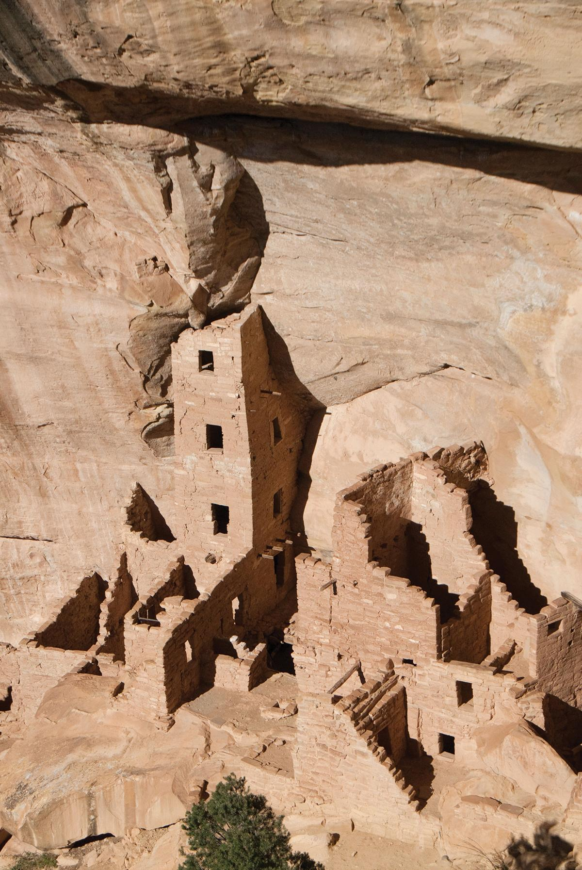 Cliff dwellings at Mesa Verde, carved into tan sandstone