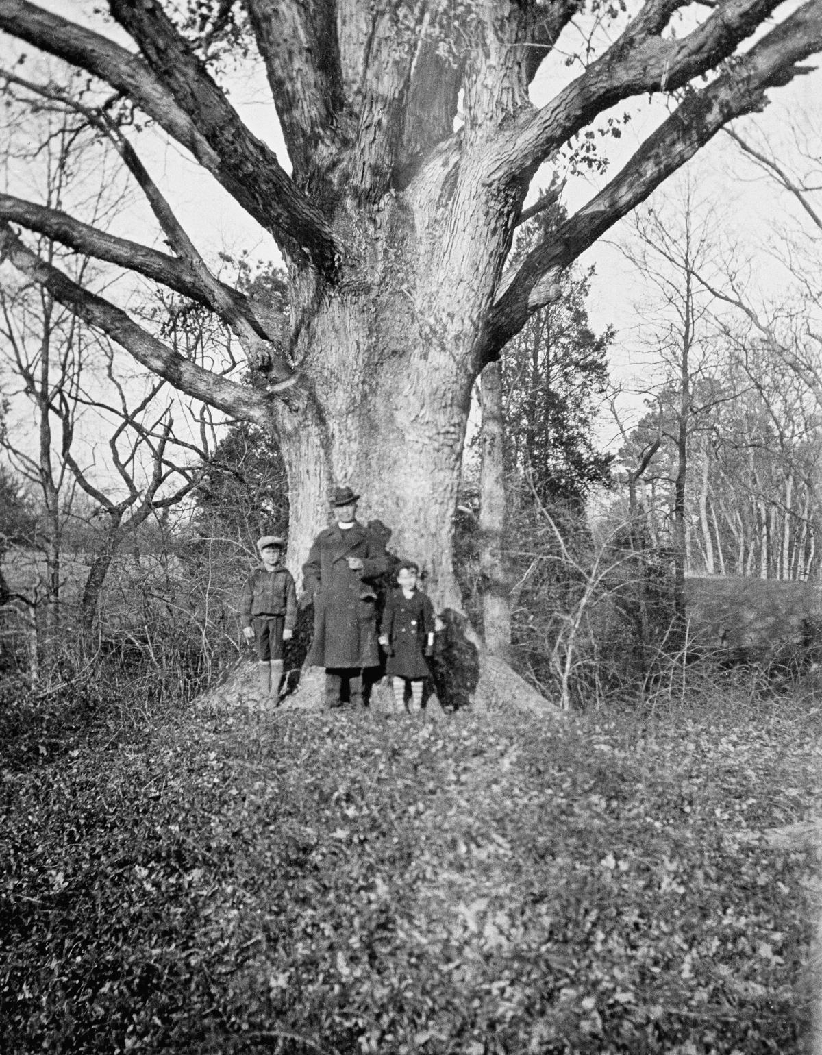 Goodwin with his sons Howard and William beneath the Great Oak at Bassett Hall, circa 1926.