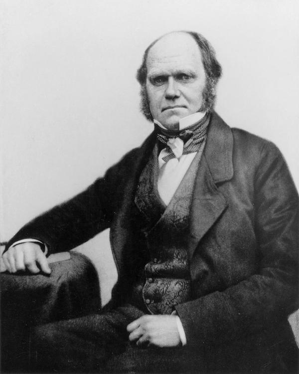 Black and white portrait of Charles Darwin