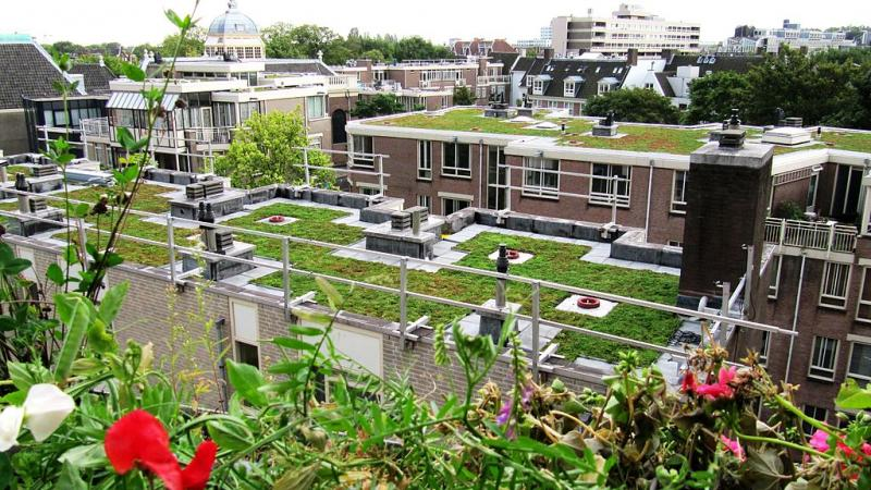 Photo of a rooftop garden in an urban city