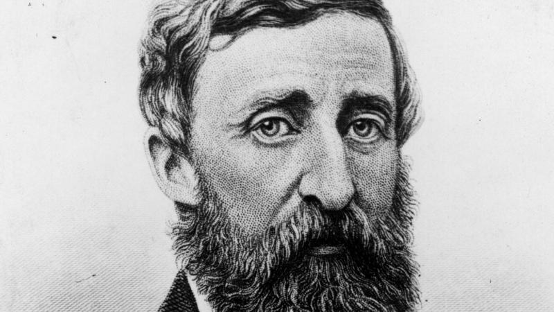 Black and white drawing of Henry David Thoreau