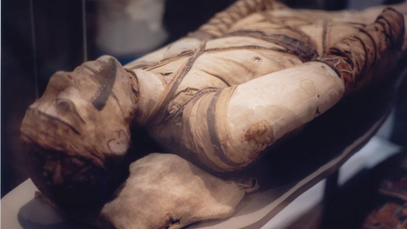 Mummy, Egyptian collection at the British Museum, London.