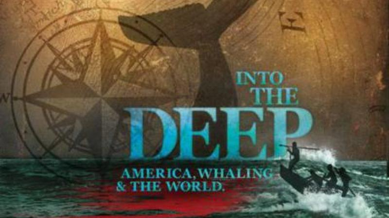 Into the Deep Header image
