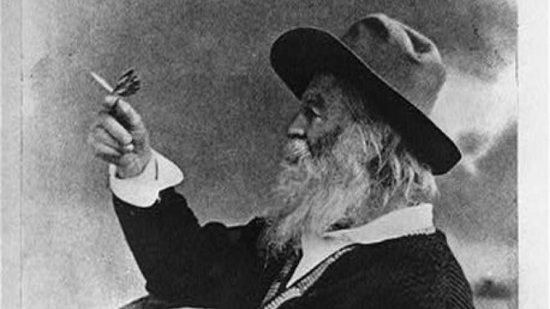 Black and white photograph of Walt Whitman