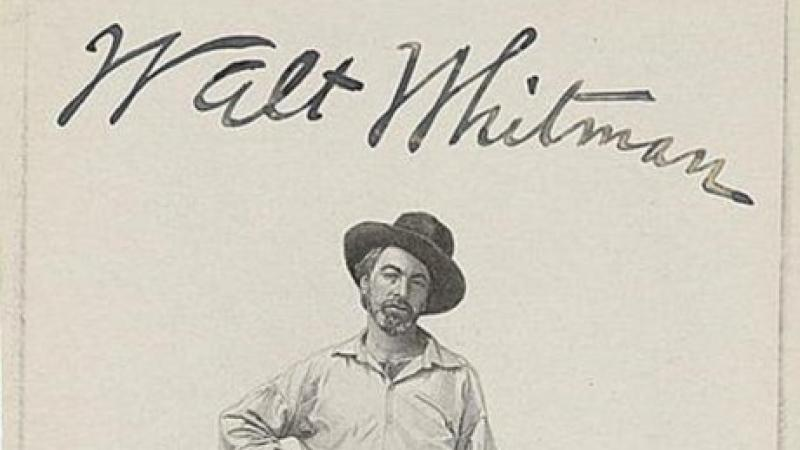 Walt Whitman, illustration of Whitman from Leaves of Grass