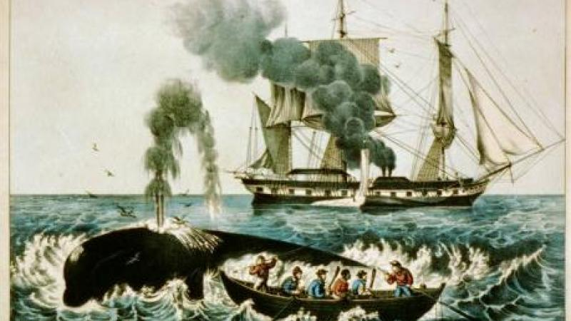 Whale fishery: attacking a right whale, Currier & Ives