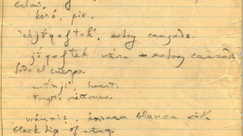 Page from one of J.P. Harrington's field notebooks