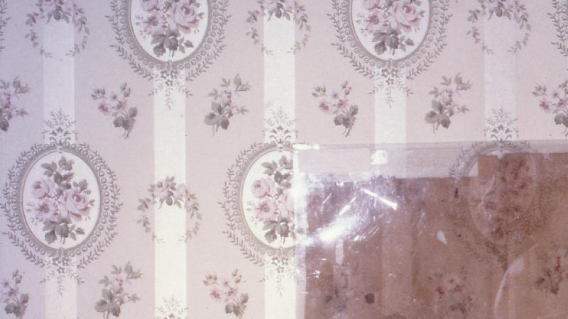 photograph of antique wallpaper
