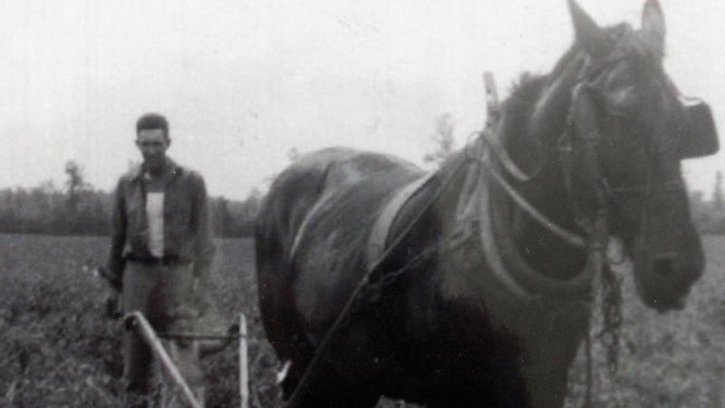 Black and white photo of a man plowing behind a horse.