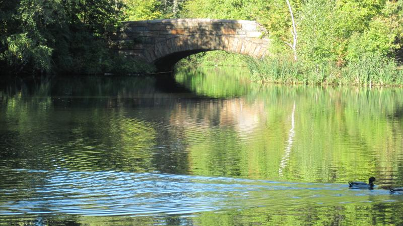 Photo of a calm lake traversed by a stone bridge.