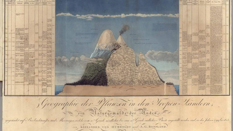 Color page of field notes from one of Alexander von Humboldt's journals. An illustration of an island is located in the center of the page.