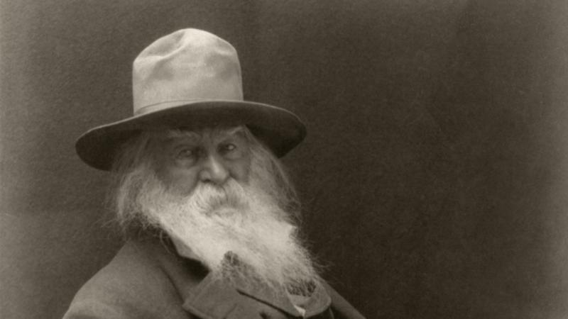 Black and white portrait of Walt Whitman sitting in a chair.
