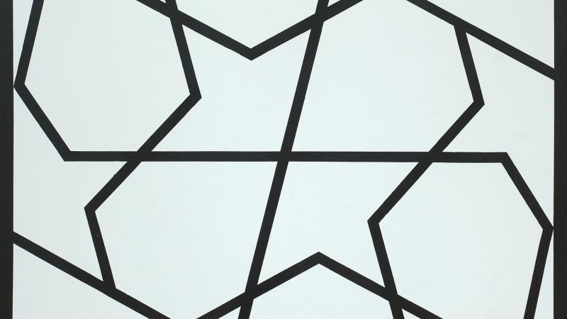 Abstract black lines crisscross a pale aqua background