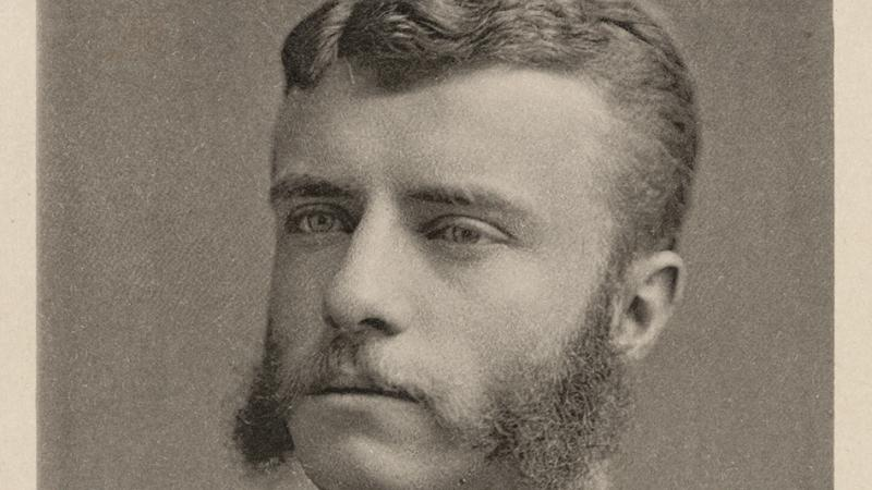 Young Roosevelt, with mutton chop sideburns, wearing a dark suit