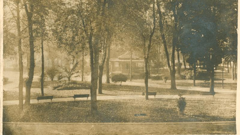 Sepia-colored photograph of a wooded lot where the Mencken family home was located.