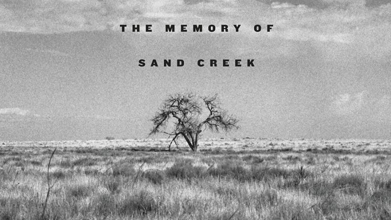 A Misplaced Massacre book cover, depicting a single tree on a grassy plain