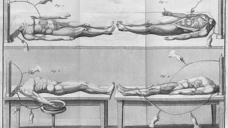 Engraving of cadavers, anatomy text