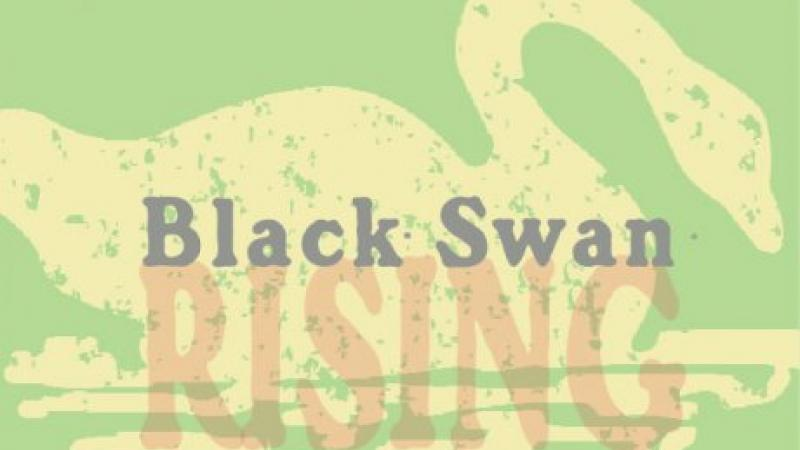 Stylish logo of the Black Swan Company with the primary colors of green and yellow.
