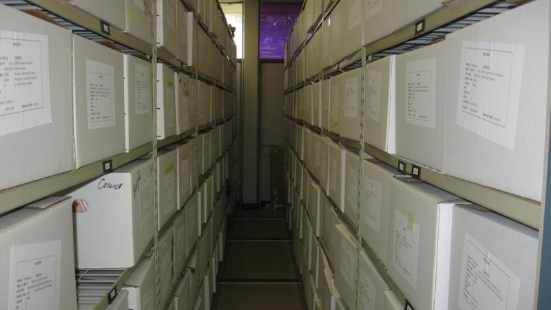 View down one of the aisles of compact storage system in the archives of Brick