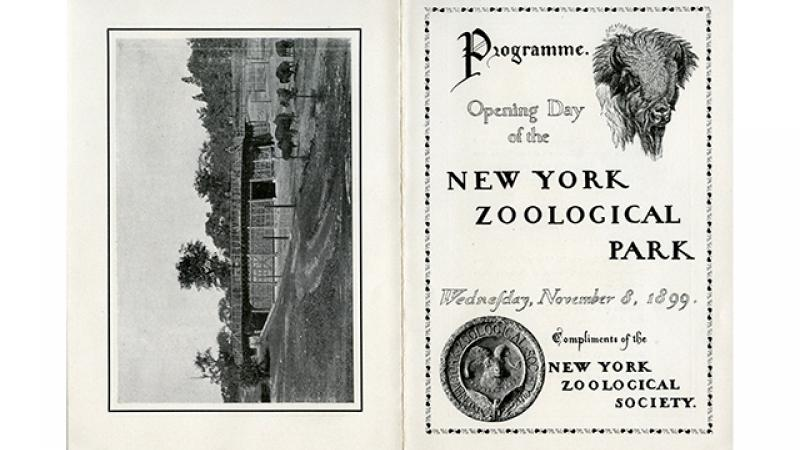 Program from the Bronx Zoo's opening day, November 8, 1899